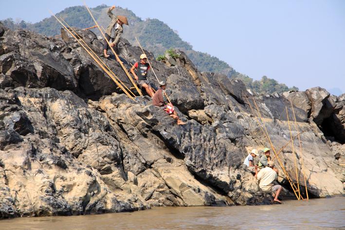 Mekong Angler