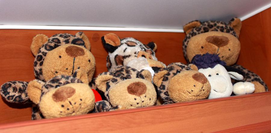 Leopardische Vollversammlung mit schottischem Schaf im Campingbus.