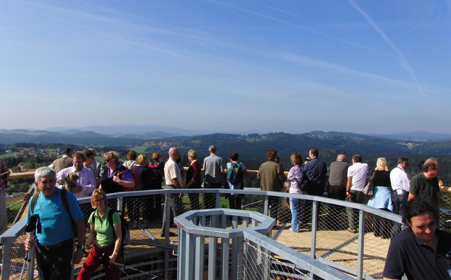 Ausicht vom Baumturm in Neuschönau. Foto: Tourismusverband Ostbayern e.V.
