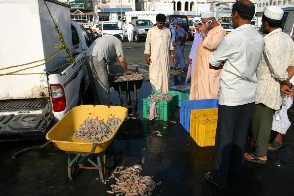 Oman Fischmarkt