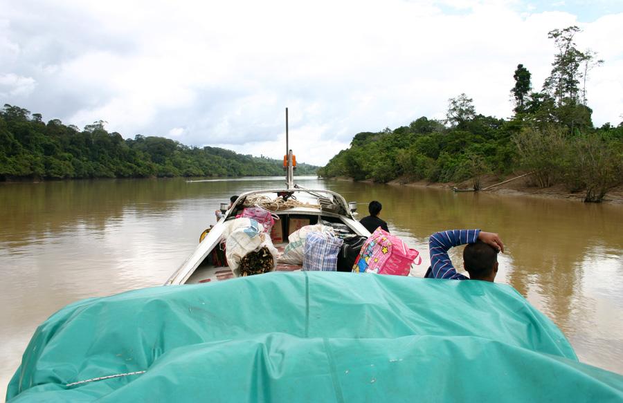 Ob ich als Rentner noch stundenlang in der Holzklasse fliegen möchte, um dann mehrere Tage mit dem Boot durch den Dschungel von Borneo zu fahren? Zweifel sind mehr als angebracht. Solche Reisen sollte man dann unternehmen, wenn man (noch) fit ist! Zumal nicht davon auszugehen ist, dass solche Touren billiger werden ...