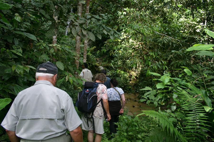 """Langzeiturlaub: """"Der Tagesspiegel"""" Langzeiturlaub bleibt weiter attraktiv. Doch der Gast legt heute mehr Wert auf Ausflüge und andere Aktivitäten als früher. Foto: Auch Senioren trekken hin und wieder im malaysischen Dschungel."""