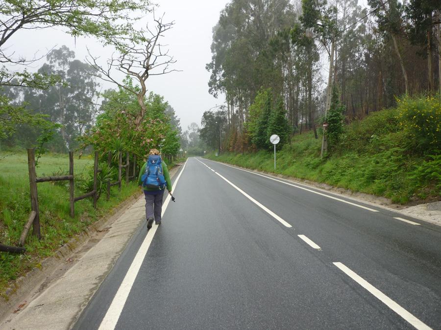 Solche Wegabschnitte begegnen Pilgern auf allen Jakobswegen.  Es gibt wirklich Schöneres als dem Straßenverkehr ausgesetzt zu sein - aber es ist unvermeidlich.