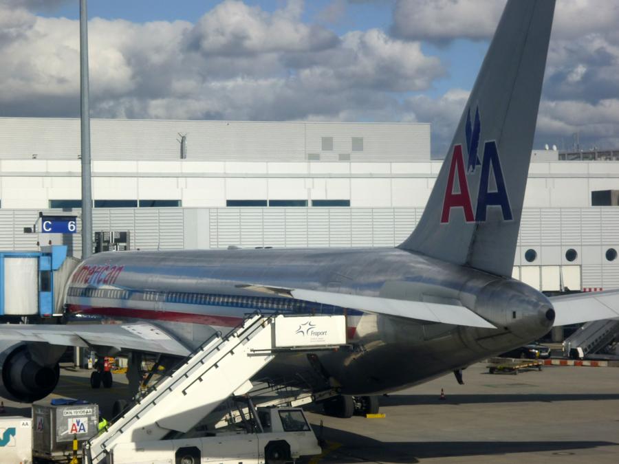 """American Airlines unterscheidet bei Hunden und Katzen sogenannte """"kurzköpfige"""" Tiere."""