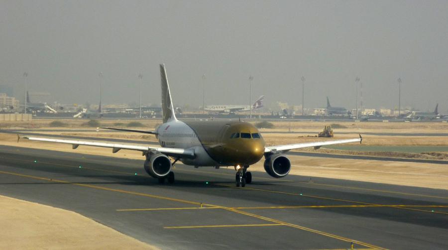 Gulf Air akzeptiert weder im Gepäckraum noch in der Kabine Haustiere.