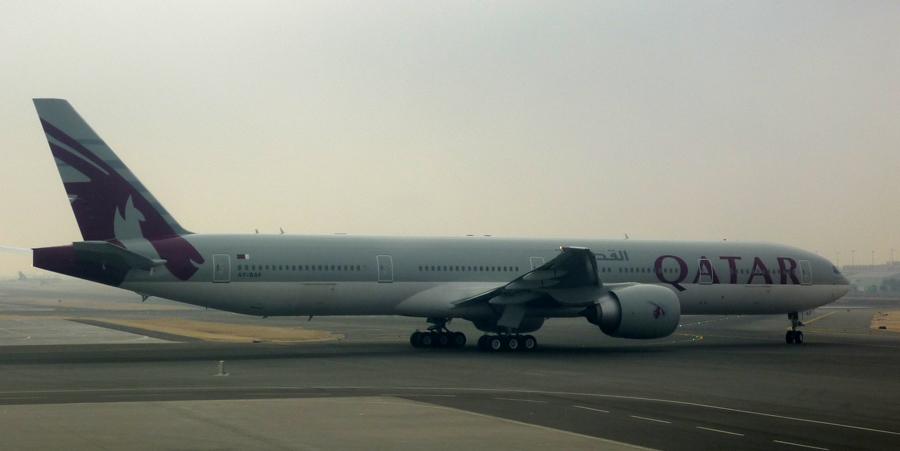 Qatar Airways  lässt kleine Vierbeiner ebenfalls mitfliegen.