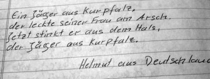 Es ist unglaublich, was deutsche Vollidioten in die Gästebücher von Pilgerherbergen absondern. Beide Fundstücke stammen aus der gleichen Herberge!