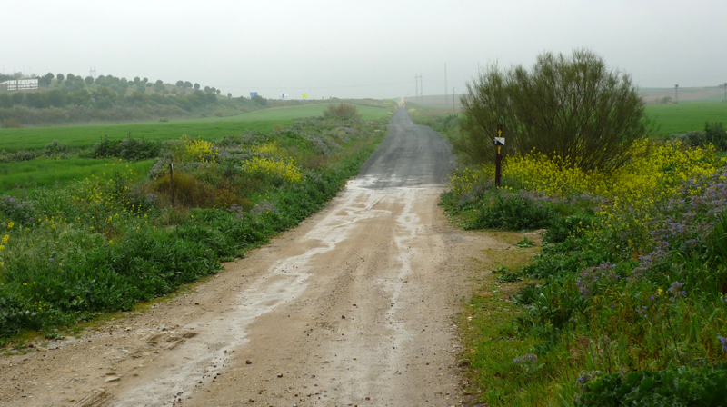 Vía de la Plata hinter Sevilla