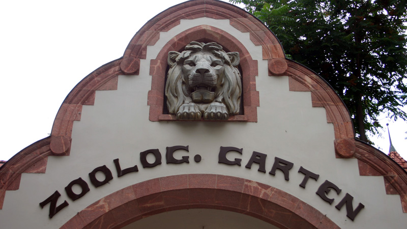 Der spektakuläre Zoo Leipzig wurde bereits 1878 geschaffen und gehört zu den ältesten der Welt. Mehr als  850 Tierarten können in ihren naturnah gestalteten Lebensräumen entdeckt werden. Öffnungszeiten: täglich von 9 Uhr bis 18 Uhr. Haltestelle: Zoo Leipzig (Straßenbahnlinie 12, Richtung Gohlis-Nord)